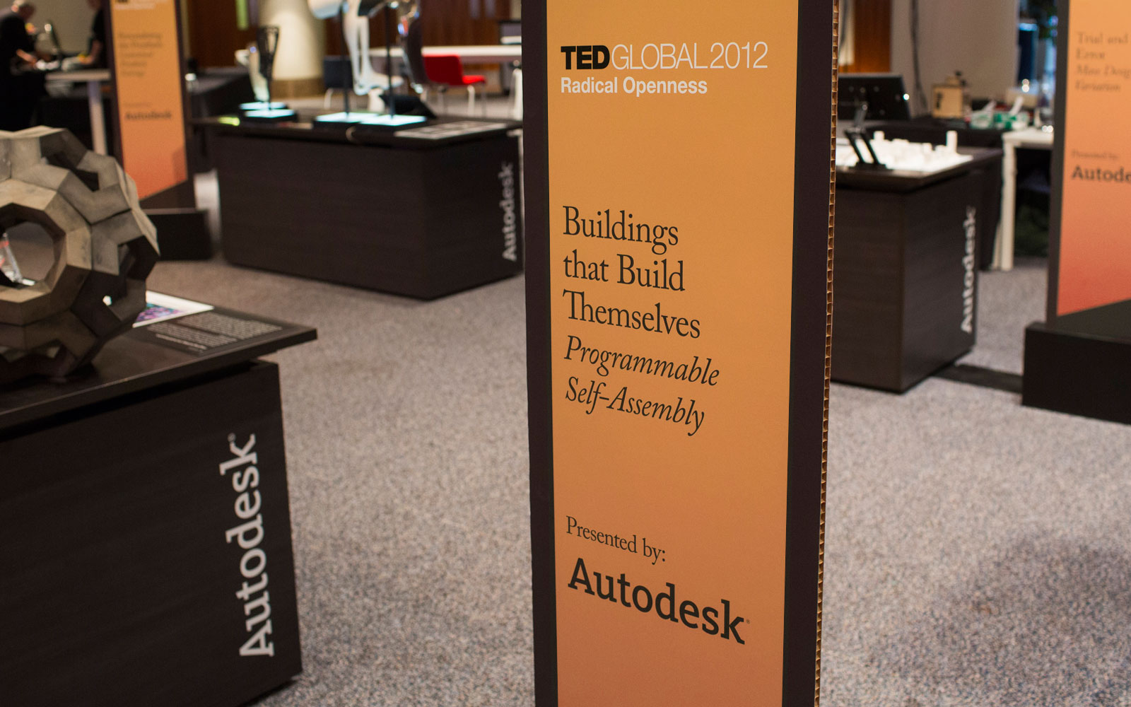 TEDGLOBAL201211